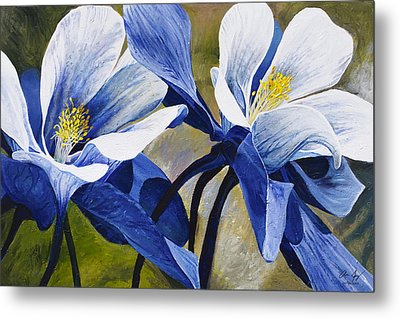 Colorado Columbines Metal Print by Aaron Spong