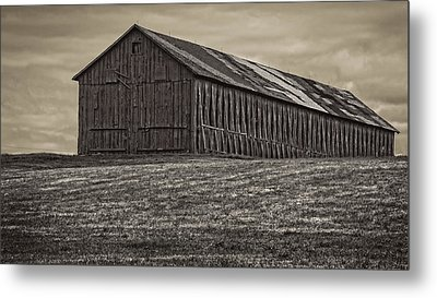 Connecticut Tobacco Barn Metal Print by Phil Cardamone
