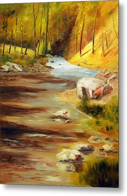 Cool Mountain Stream Metal Print by Phil Burton