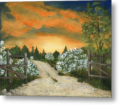 Country Road Metal Print by Anastasiya Malakhova