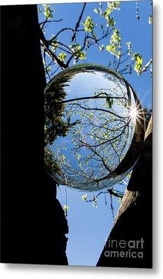 Crystal Reflection Metal Print by Deborah Klubertanz