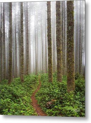 Cummins Wilderness Trail Metal Print