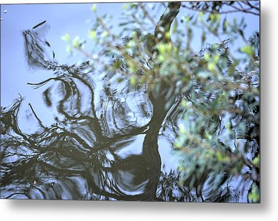 Metal Print featuring the photograph Dancing Leaves by Linda Geiger