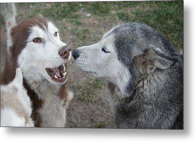 Dog Breath Metal Print by Lynda Dawson-Youngclaus