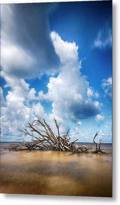 Metal Print featuring the photograph Driftwood Sky by Alan Raasch