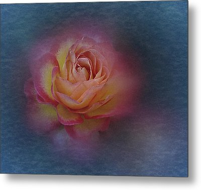 Metal Print featuring the photograph End Of September 2016 Rose by Richard Cummings
