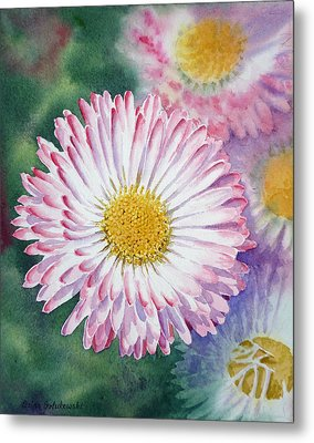 English Daisies Metal Print by Irina Sztukowski