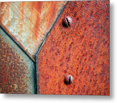 Entangle Metal Print by Tom Druin