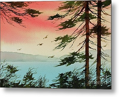 Metal Print featuring the painting Evening Light by James Williamson