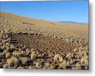 Fairy Circles In Namib Desert Metal Print