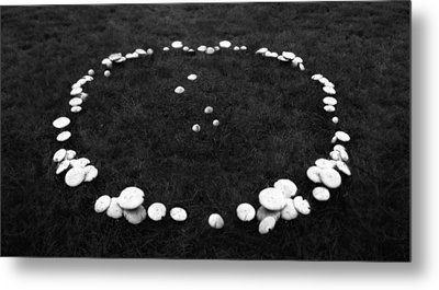 Fairy Ring Metal Print by Mark Wagoner