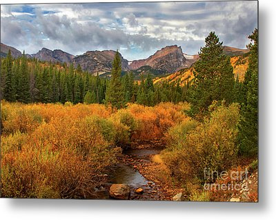 Fall In Rocky Mountain National Park Metal Print by Ronda Kimbrow