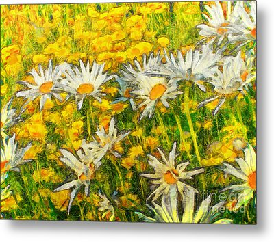 Field Of Daisies Metal Print by Claire Bull