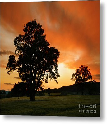 Fire On The Sky Metal Print by Angel  Tarantella