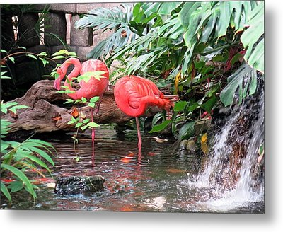 Flamingos Metal Print by Betty Buller Whitehead