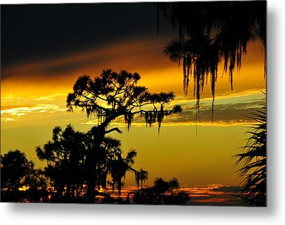 Central Florida Sunset Metal Print by David Lee Thompson