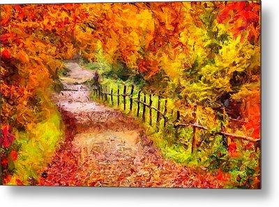 Fall Foliage Path 2 Metal Print