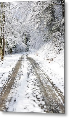 Forest Service Road 76 Metal Print by Thomas R Fletcher