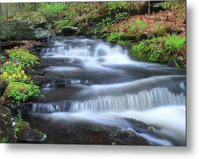 Forest Stream And Marsh Marigolds Metal Print by John Burk