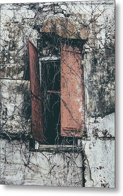 Metal Print featuring the photograph Forgotten Homestead by Kim Hojnacki
