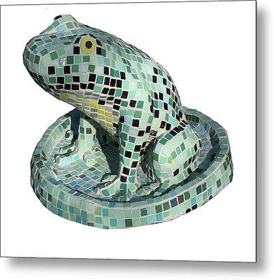 Frog Metal Print by Katia Weyher