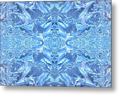 Frost Feathers Metal Print by Marianne Dow