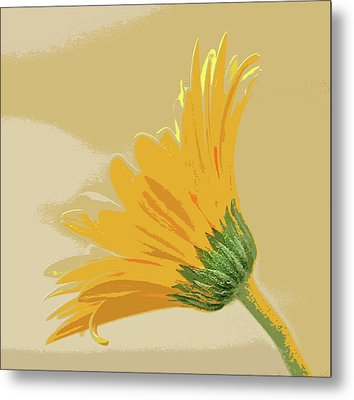Gerbera Abstract Metal Print by Bill Morgenstern