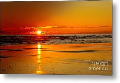 Golden Sunset Metal Print by Robert Bales