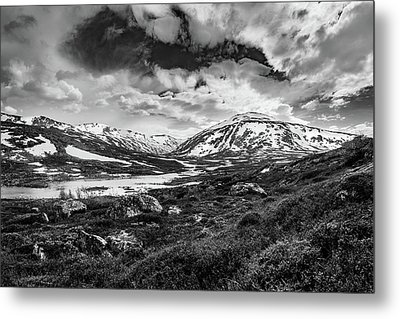 Metal Print featuring the photograph Green Carpet Under The Cotton Sky by Dmytro Korol