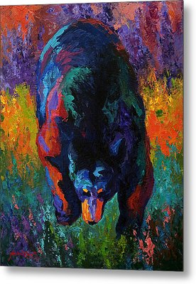Grounded - Black Bear Metal Print by Marion Rose