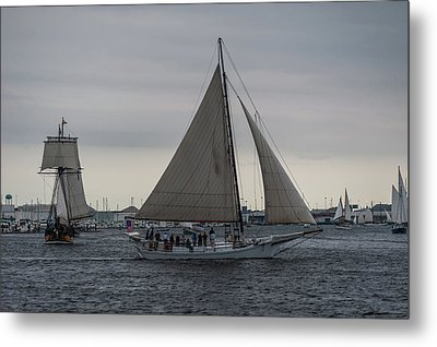 Harbor Sail Metal Print
