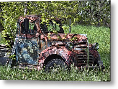 Has Caught Some Rust Metal Print by Richard Bean
