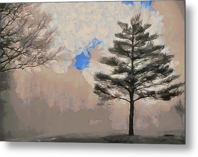 Metal Print featuring the mixed media Hickory by Trish Tritz