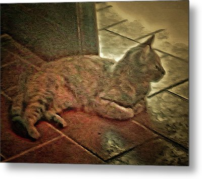 Hidden In The Shadows Metal Print by Dorothy Berry-Lound