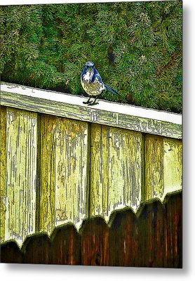 Hiding In Safety Metal Print by Nancy Marie Ricketts