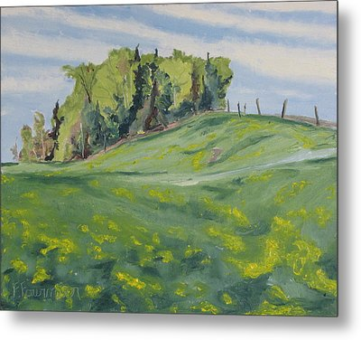 Hills Forest And Dadelions  Metal Print by Francois Fournier