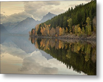 Metal Print featuring the photograph His Reflections by Al Swasey