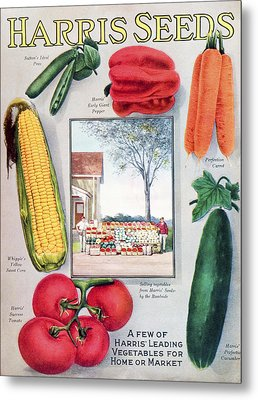 Historic Harris Seeds Catalog Metal Print by Remsberg Inc
