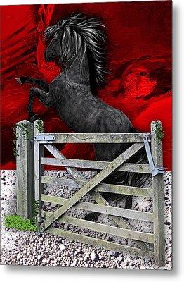 Horse Dreams Collection Metal Print