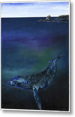 Humpback Whale Metal Print by Anthony Burks Sr
