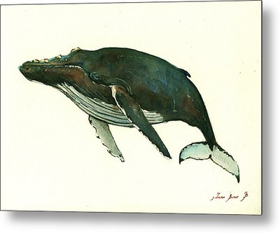 Humpback Whale  Metal Print by Juan  Bosco