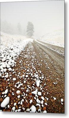 Ice Fog In Cypress Hills Provincial Park Of Saskatchewan Metal Print
