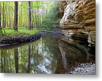 Illinois Canyon In Spring Metal Print