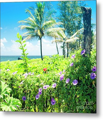 Metal Print featuring the photograph Ipomoea Keanae Morning Glory Maui Hawaii by Sharon Mau
