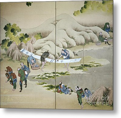 Japan: Cotton Processing Metal Print by Granger