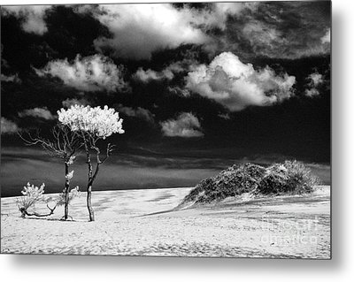 Jockey's Ridge Metal Print by Jeff Holbrook