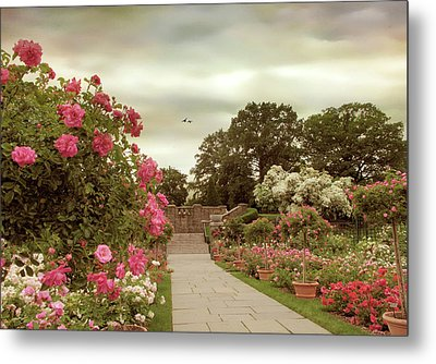 June In Bloom Metal Print by Jessica Jenney
