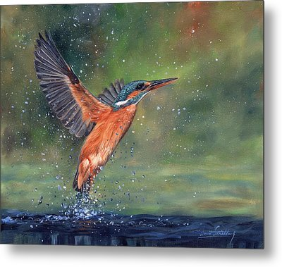 Metal Print featuring the painting Kingfisher by David Stribbling