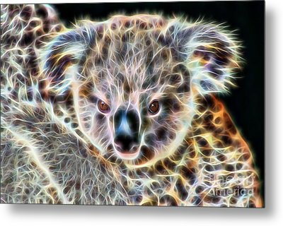 Koala Bear Metal Print by Marvin Blaine