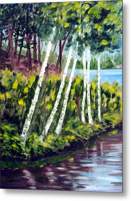 Lakeside Birches Metal Print by Anne Trotter Hodge